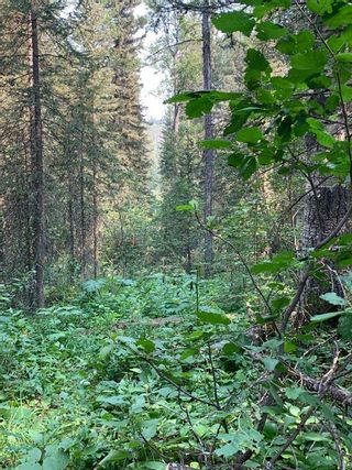 Photo 25: .. None: Bragg Creek Residential Land for sale : MLS®# A1131758