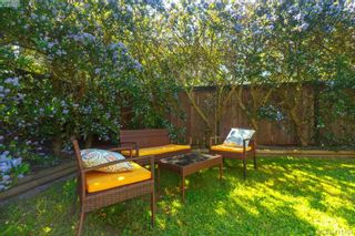 Photo 34: 4039 South Valley Dr in VICTORIA: SW Strawberry Vale House for sale (Saanich West)  : MLS®# 816381