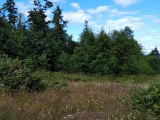 Photo 8: LT9 EAGLES DRIVE in COURTENAY: CV Courtenay North Land for sale (Comox Valley)  : MLS®# 791561