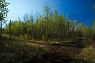 Photo 11: RR 21 TWP 565A Lake Nakamun: Rural Lac Ste. Anne County Rural Land/Vacant Lot for sale : MLS®# E4246330