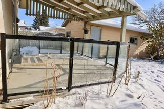 Photo 14: 153 Margate Close NE in Calgary: Marlborough Detached for sale : MLS®# A1044736