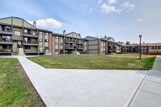 Photo 30: 3312 13045 6 Street SW in Calgary: Canyon Meadows Apartment for sale : MLS®# A1126662