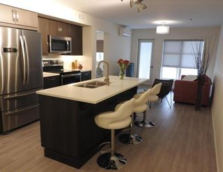 Photo 4: 126 670 Hugo Street South in Winnipeg: Lord Roberts Condominium for sale (1Aw)  : MLS®# 202105027