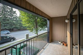 Photo 24: 3101 4001C 49 Street NW in Calgary: Varsity Apartment for sale : MLS®# A1135527