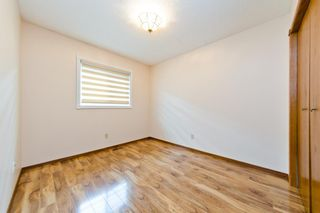 Photo 27: 45 Martinview Crescent NE in Calgary: Martindale Detached for sale : MLS®# A1112618