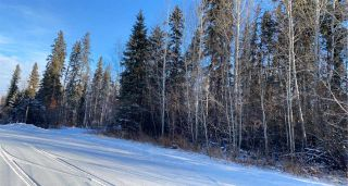 Photo 3: TWP 532A RR 275: Rural Parkland County Rural Land/Vacant Lot for sale : MLS®# E4223364
