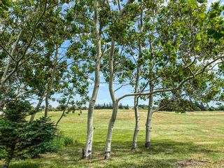 Photo 29: 255 SEAMAN Street in East Margaretsville: 400-Annapolis County Residential for sale (Annapolis Valley)  : MLS®# 202116958