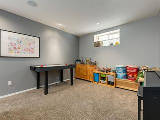 Photo 33: 17 ROYAL ELM Way NW in Calgary: Royal Oak Detached for sale : MLS®# A1034855