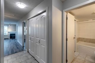 Photo 5: 338 35 Richard Court SW in Calgary: Lincoln Park Apartment for sale : MLS®# A1124714