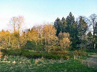 Photo 19: # 35 15399 GUILDFORD DR in Surrey: Guildford Condo for sale (North Surrey)  : MLS®# F1435979