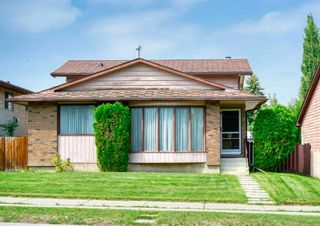 Main Photo: 196 Bermuda Drive NW in Calgary: Beddington Heights Detached for sale : MLS®# A1131717