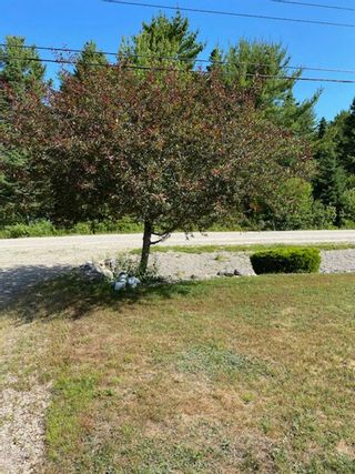 Photo 4: 209 Clayton Drive in Fox Point: 405-Lunenburg County Residential for sale (South Shore)  : MLS®# 202117636