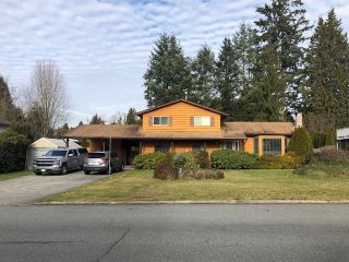 Photo 3: 21197 Cook Avenue in Maple Ridge: Southwest Maple Ridge House for sale : MLS®# R2335053