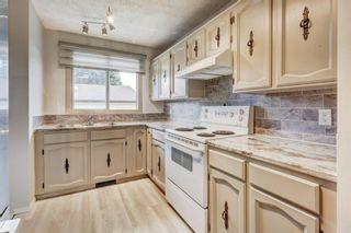 Photo 8: 5619 Madigan Drive NE in Calgary: Marlborough Park Detached for sale : MLS®# A1092723