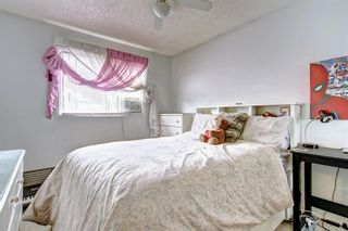Photo 26: 83 CASTLEFALL Road NE in Calgary: Castleridge Detached for sale : MLS®# C4194335