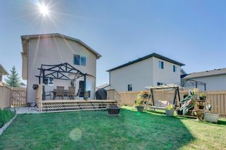 Photo 25: 283 Applestone Park SE in Calgary: Applewood Park Detached for sale : MLS®# A1087868