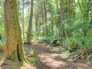 Photo 9: 1686 Whiffin Spit Rd in SOOKE: Sk Whiffin Spit House for sale (Sooke)  : MLS®# 820160