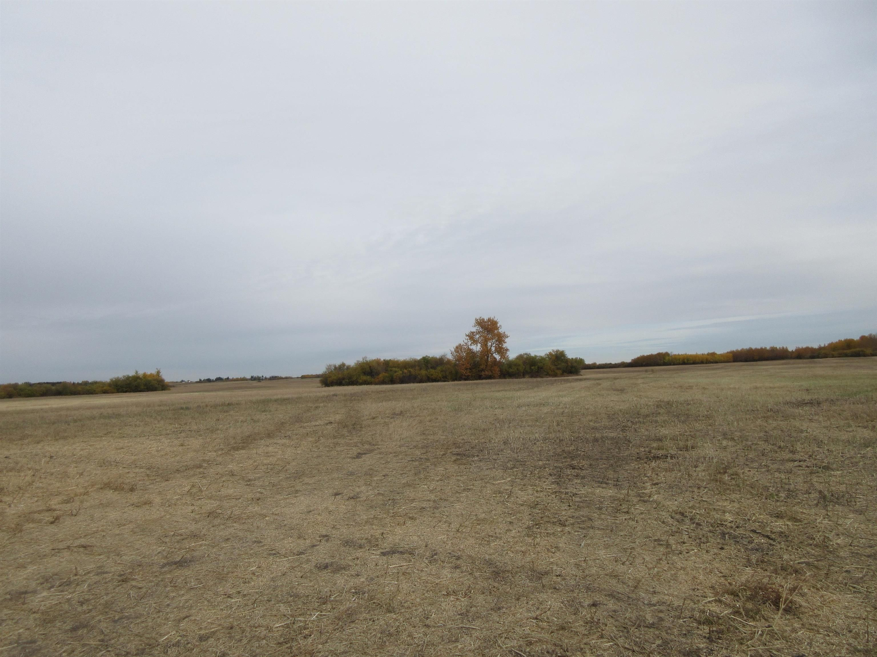 Main Photo: 55101 RR 270: Rural Sturgeon County Rural Land/Vacant Lot for sale : MLS®# E4265205