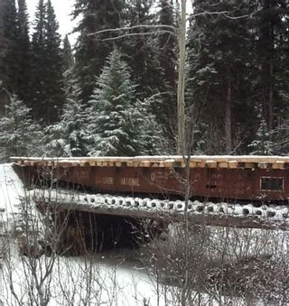 Photo 29: 143 Laidman Lake, Smithers, BC, V0L 1C0 in Smithers: Home for sale : MLS®# N234907