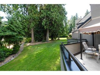 Photo 20: 3771 NICO WYND Drive in Surrey: Elgin Chantrell Home for sale ()  : MLS®# F1419246