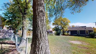 Photo 8: 383 Pacific Avenue in Winnipeg: House for sale : MLS®# 202121244