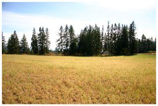 Photo 39: 4820 Northeast 30 Street in Salmon Arm: North Broadview House for sale (NE Salmon Arm)  : MLS®# 10143037