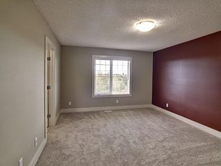 Photo 17: 656 Copperfield Boulevard SE in Calgary: Copperfield Detached for sale : MLS®# A1143747
