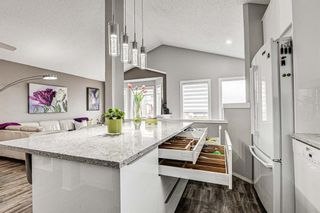 Photo 11: 31 River Rock Circle SE in Calgary: Riverbend Detached for sale : MLS®# A1089963