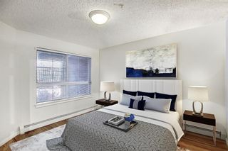 Photo 13: 229 22 Richard Place SW in Calgary: Lincoln Park Apartment for sale : MLS®# A1063998