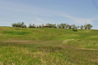 Photo 4: Range Road 16.4: Rural Starland County Land for sale : MLS®# A1049456
