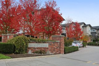 """Photo 26: 206 2450 161A Street in Surrey: Grandview Surrey Townhouse for sale in """"GLENMORE"""" (South Surrey White Rock)  : MLS®# R2234586"""