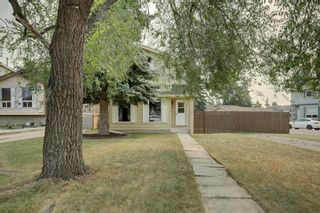 Photo 3: 92 Erin Croft Crescent SE in Calgary: Erin Woods Detached for sale : MLS®# A1136263