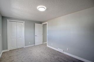 Photo 19: 3020 Dover Crescent SE in Calgary: Dover Semi Detached for sale : MLS®# A1147762