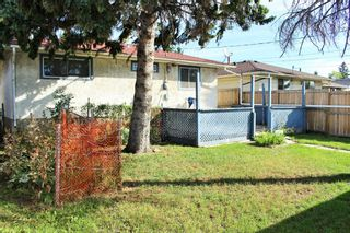 Photo 19: 254 Dovercliffe Way SE in Calgary: Dover Detached for sale : MLS®# A1146227