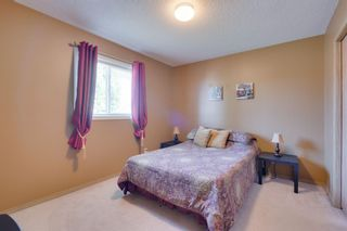 Photo 34: 256 COVENTRY Green NE in Calgary: Coventry Hills Detached for sale : MLS®# A1024304