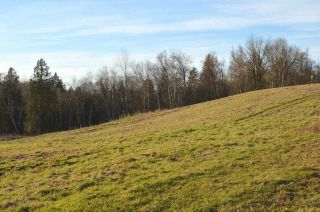 Photo 5: 30169 MARSHALL ROAD in Abbotsford: Abbotsford West Land for sale : MLS®# R2000064