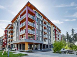 Photo 1:  in : UBC Condo for rent (Vancouver)  : MLS®# AR115