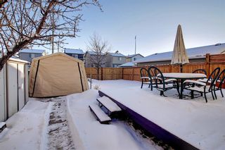 Photo 41: 148 Martinbrook Road NE in Calgary: Martindale Detached for sale : MLS®# A1069504
