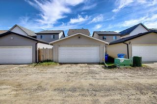 Photo 39: 168 SKYVIEW SPRINGS Gardens NE in Calgary: Skyview Ranch Detached for sale : MLS®# A1093077