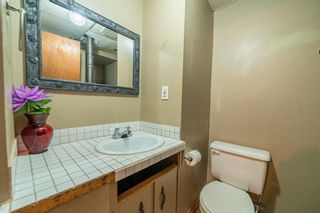 Photo 21: 4333 58 Street NE in Calgary: Temple Detached for sale : MLS®# A1092710