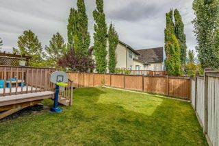 Photo 39: 18 Copperfield Crescent SE in Calgary: Copperfield Detached for sale : MLS®# A1141643