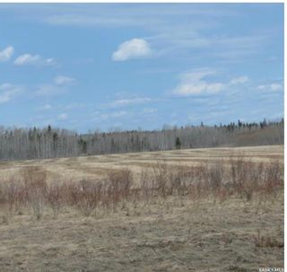 Photo 6: White Fox Land in Torch River: Lot/Land for sale (Torch River Rm No. 488)  : MLS®# SK842009