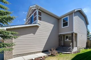 Photo 38: 94 Royal Elm Way NW in Calgary: Royal Oak Detached for sale : MLS®# A1107041