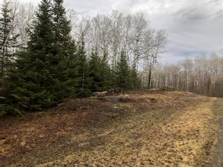 Photo 4: 12 Willow Creek Road: Manigotagan Residential for sale (R28)  : MLS®# 202104694