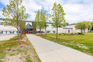 Photo 46: 8911 157 Street in Edmonton: Zone 22 House for sale : MLS®# E4246342