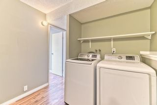 Photo 7: 1101 53A Street SE in Calgary: Penbrooke Meadows Row/Townhouse for sale : MLS®# A1093986