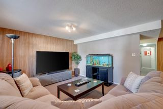 Photo 17: 10803 5 Street SW in Calgary: Southwood Semi Detached for sale : MLS®# A1129054