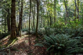 Photo 73: Lot 2 Eagles Dr in : CV Courtenay North Land for sale (Comox Valley)  : MLS®# 869395