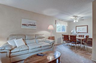 Photo 9: 511 Aberdeen Road SE in Calgary: Acadia Detached for sale : MLS®# A1153029