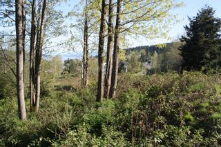 Photo 6: LT 1 Tappin St in : CV Union Bay/Fanny Bay Land for sale (Comox Valley)  : MLS®# 858577